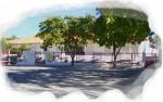 Centro Escolar 007